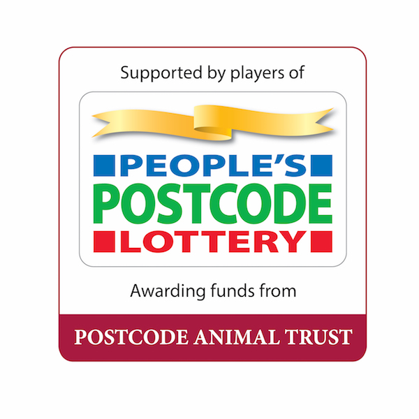 Grant from People's Post Code Lottery gives real boost to pony stall refurb
